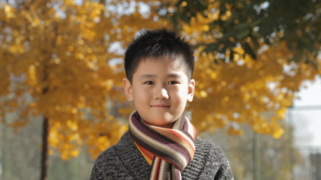 ms portrait of boy wearing scarf, smiling at camera in park / china - chinesischer abstammung stock-videos und b-roll-filmmaterial