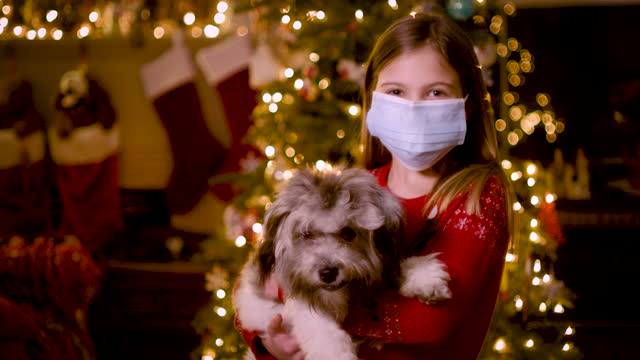 portrait of child and dog in front of christmas tree - straight hair stock videos & royalty-free footage