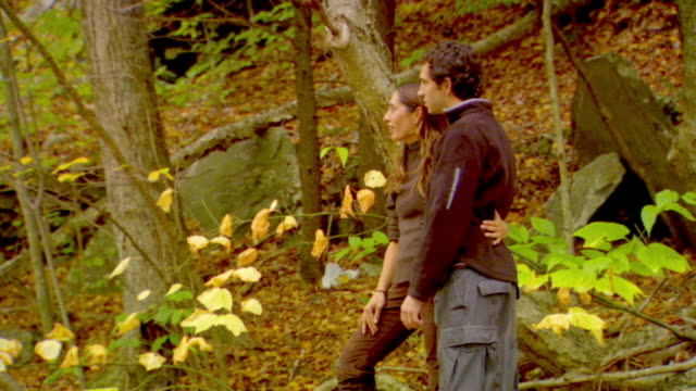 ms, portrait of couple in forest, autumn, phoenicia, new york, usa - escapism stock videos & royalty-free footage