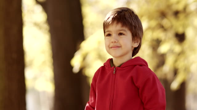 portrait of cute boy - fine art portrait stock videos & royalty-free footage