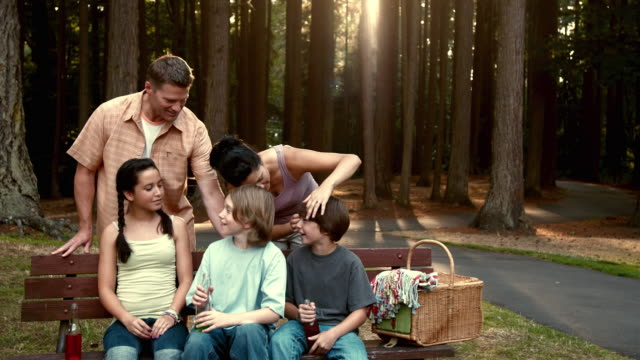 ws portrait of family with three children (11-14) sitting on park bench / lynnwood, washington state, usa - familie mit zwei generationen stock-videos und b-roll-filmmaterial