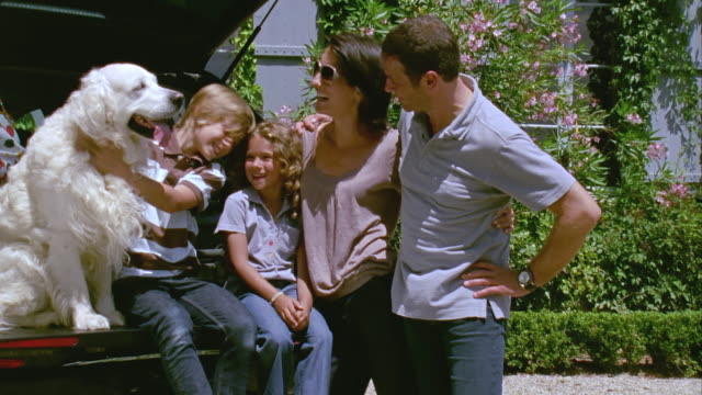 ms, portrait of family with two children (6-7, 12-13) and golden retriever at open car trunk, saint ferme, gironde, france - standing stock videos & royalty-free footage