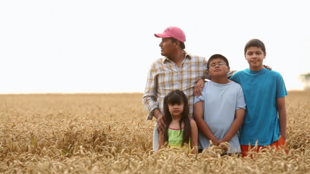 ms ds portrait of farmer and family in wheat field / oyster, virginia, usa - lavoratore emigrante video stock e b–roll