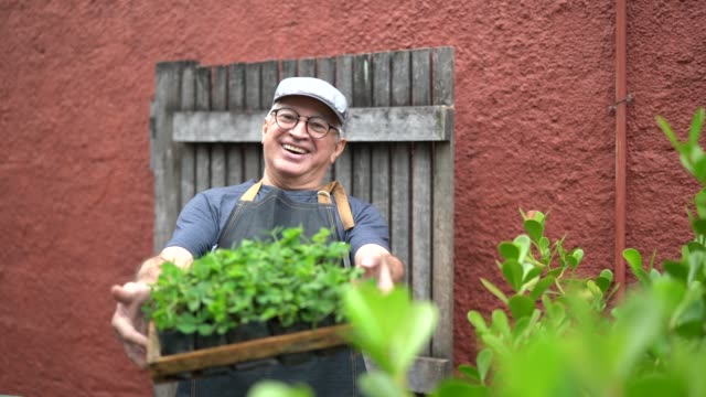 portrait of farmer holding plants - market retail space stock videos & royalty-free footage
