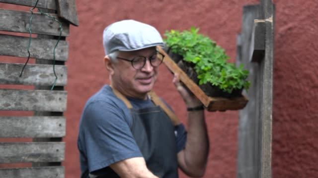 vídeos y material grabado en eventos de stock de retrato del granjero, abre la puerta y manteniendo las plantas - puerta estructura creada por el hombre