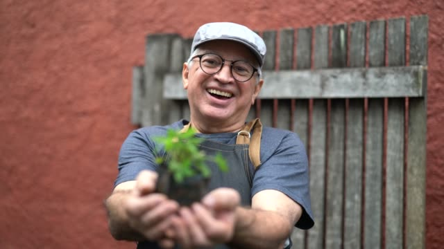 portrait of farmer showing plants - employee stock videos & royalty-free footage