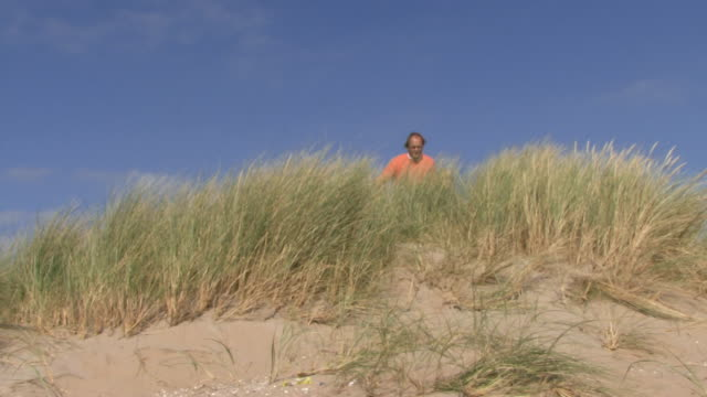 vidéos et rushes de ws, portrait of father and daughter on dunes overlooking the sea - pays bas