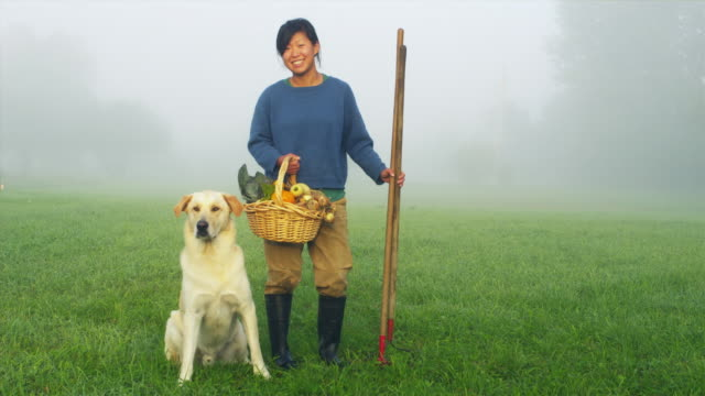 WS Portrait of female organic farmer standing in field with wicker basket full of vegetables and rake, dog sitting on grass, Manchester, Vermont, USA