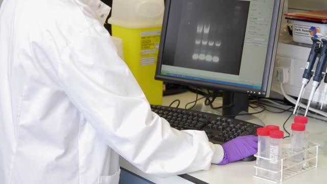 portrait of female scientist in laboratory - dna鑑定点の映像素材/bロール