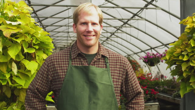 cu pan portrait of garden center employee standing in greenhouse, manchester, vermont, usa - manchester vermont stock videos & royalty-free footage