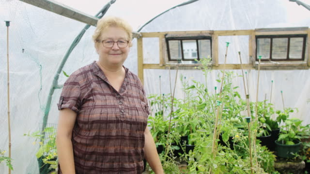 vídeos de stock e filmes b-roll de portrait of gardener - 60 64 anos