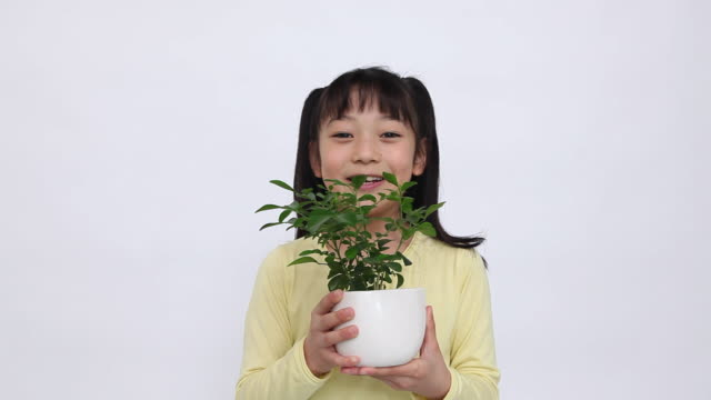 MS Portrait of girl (8-9) holding potted plant, standing in studio / Shibuya, Tokyo, Japan