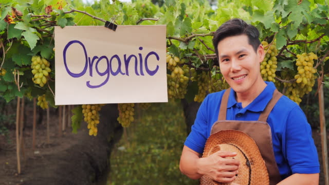 portrait of happy young man farmer with his organic vegetables farm background.farming, gardening, agriculture, harvesting and people concept ,organic farming concept,asia - organic stock videos & royalty-free footage