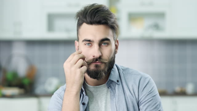 portrait of hipster - barba peluria del viso video stock e b–roll