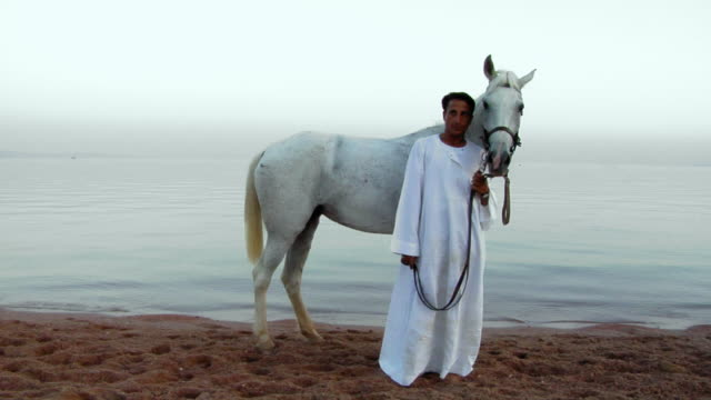 WS Portrait of man with horse on beach, Dahab, Sinai, Egypt