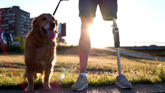 vídeos de stock e filmes b-roll de portrait of man with prosthetic leg and his dog - one animal