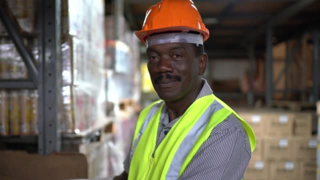 portrait of mature worker at warehouse - delivery person stock videos & royalty-free footage