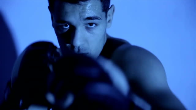 portrait of mma fighter in boxing pose - mixed martial arts stock videos and b-roll footage