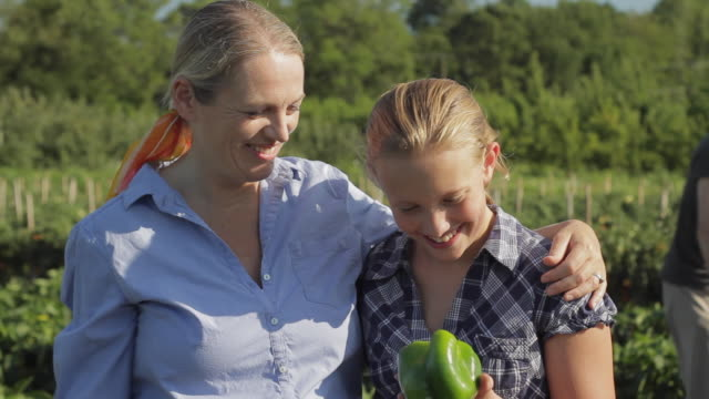 vidéos et rushes de ms portrait of mother and daughter (12-13) in field looking at green pepper / lebonan township, new jersey, usa  - ferme aménagement de l'espace