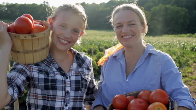 ms portrait of mother and daughter (12-13) with fresh picked tomatoes / lebonan township, new jersey, usa - farm stock videos & royalty-free footage