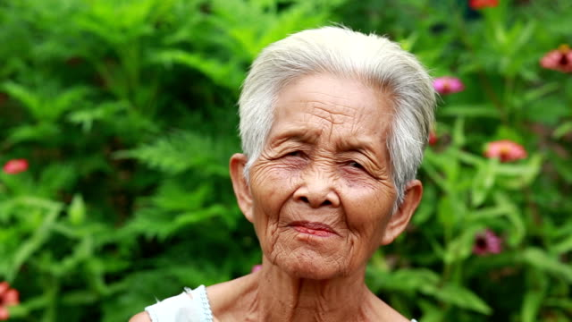 portrait of old asian woman - video portrait stock videos & royalty-free footage