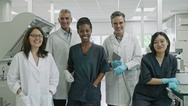 portrait of pathology lab coworkers at clinical analysis laboratory - small group of people stock videos & royalty-free footage