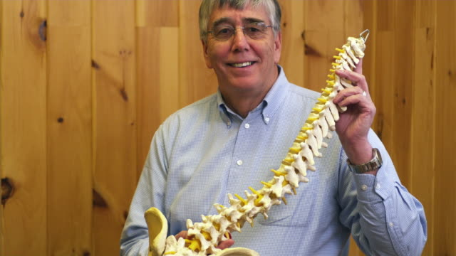 ms portrait of physical therapists with model of spine / manchester, vermont, usa - osteopath stock videos & royalty-free footage