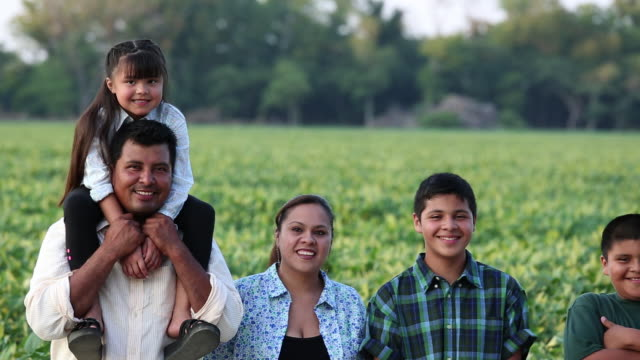 ms ds portrait of proud family standing in field of crops / eastville, virginia, united states - lavoratore agricolo video stock e b–roll