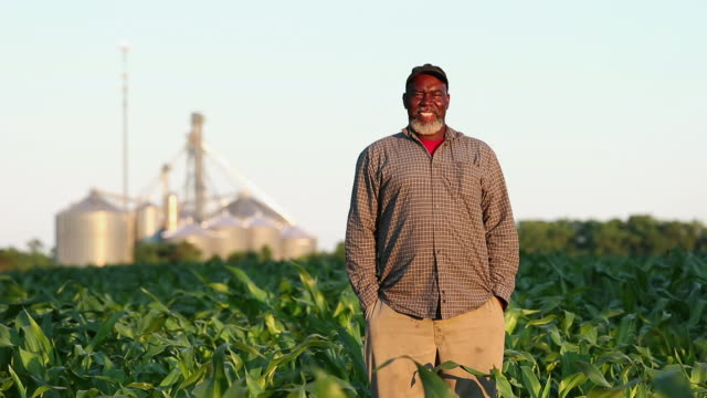 WS PAN Portrait of Proud Farmer Standing in Cornfield / Eastville, Virginia, USA