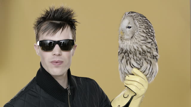 vídeos de stock e filmes b-roll de portrait of punk man sticking tongue out with owl perched on hand, with falconer's glove on - punk
