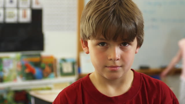 cu portrait of schoolboy (10-11) in classroom, manchester, vermont, usa - human head stock videos & royalty-free footage