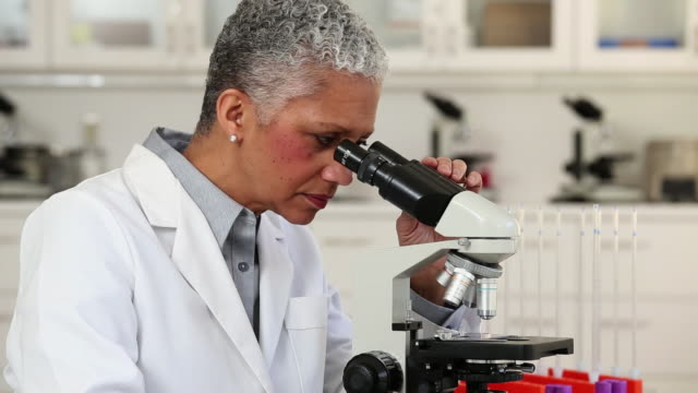 MS TU Portrait of Scientist Looking at Samples Under Microscope, Taking Notes / Richmond, Virginia, United States