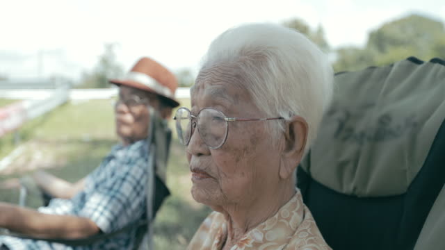 portrait of senior asian woman - video portrait stock videos & royalty-free footage