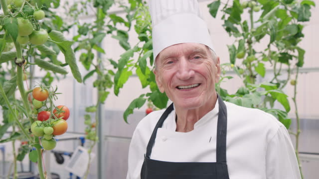 portrait of senior chef at hotel in organic garden - apron stock videos & royalty-free footage
