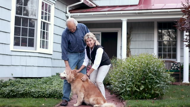 portrait of senior couple and their dog - manchester vermont stock videos & royalty-free footage