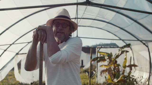 portrait of senior man leaning on pitchfork in greenhouse, smiling - environmental conservation stock-videos und b-roll-filmmaterial