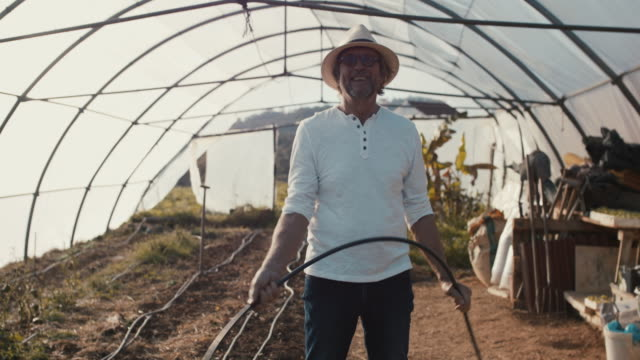 portrait of senior man smiling in greenhouse - local produce stock videos & royalty-free footage