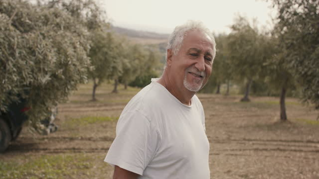 portrait of senior olive farmer in the wind - one senior man only stock videos & royalty-free footage