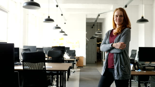 portrait of smiling businesswoman at office - pendant light stock videos & royalty-free footage