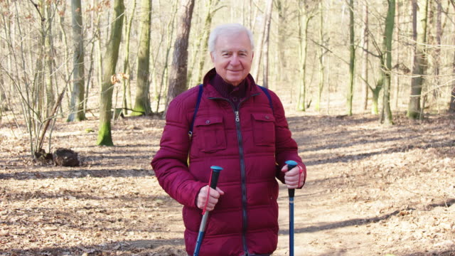 portrait of smiling elderly hiker in woodland - hiking pole stock videos and b-roll footage