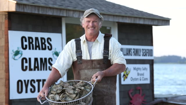 stockvideo's en b-roll-footage met ms portrait of smiling waterman holding basket of fresh oysters in front of seafood shack / oyster, virginia, usa - virginia amerikaanse staat
