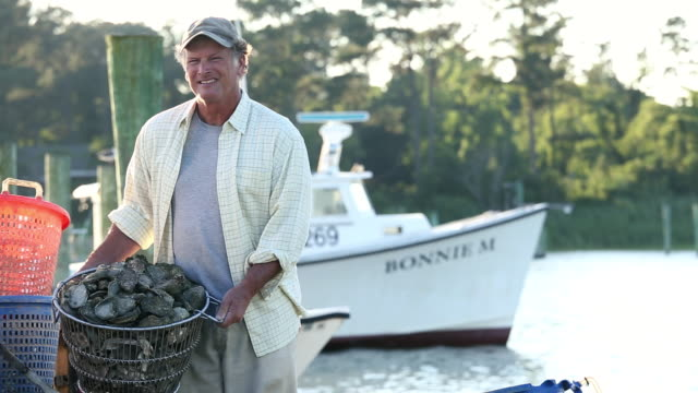 ms pan portrait of smiling waterman holding basket of fresh oysters / oyster, virginia, usa - oyster shell stock videos & royalty-free footage