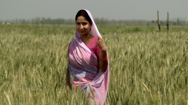 ws cs portrait of smiling woman standing in a wheat field / samalkha, haryana, india - turning stock videos & royalty-free footage