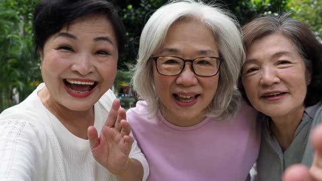 porträt von drei damen zusammen im park - subjektive kamera blickwinkel aufnahme stock-videos und b-roll-filmmaterial