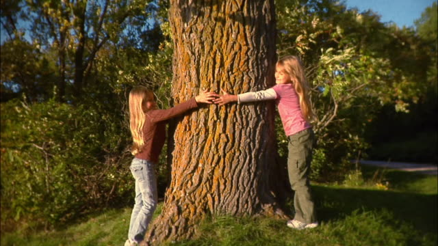 portrait of twin sisters hugging tree and holding hands - tree hugging stock videos & royalty-free footage
