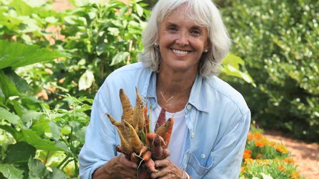 vídeos y material grabado en eventos de stock de cu tu retrato de mujer cosechando verduras en el jardín, richmond, virginia, ee. uu. - 55 59 años