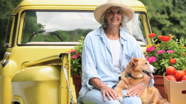ms pan portrait of woman petting dog on bed of antique pickup truck, potted flowers in background, richmond, virginia, usa - straw hat stock videos and b-roll footage