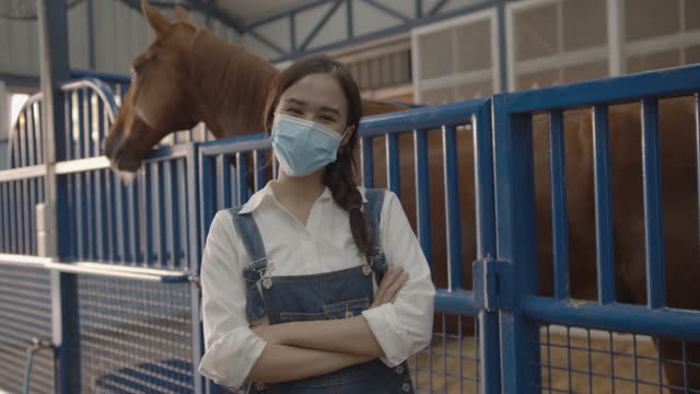 portrait of young asian woman smiling behind the mask - livestock stock videos & royalty-free footage