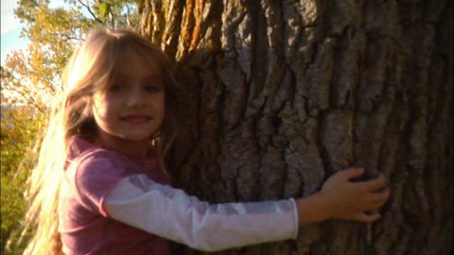 portrait of young girl hugging tree - tree hugging stock videos & royalty-free footage