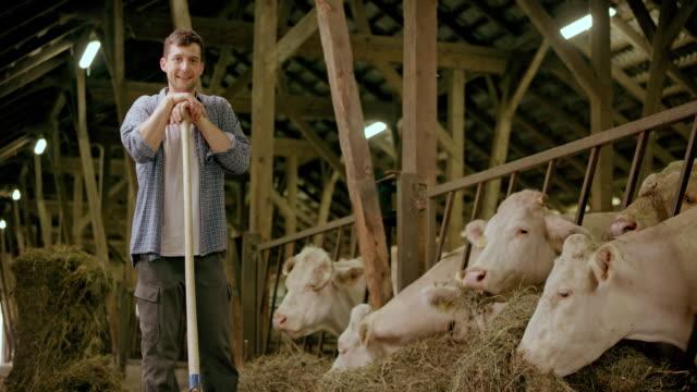 vídeos y material grabado en eventos de stock de retrato de joven agricultor hombre alimentación de ganado en el granero y sonriendo - bieldo equipo agrícola